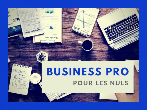 Business pro pour les nuls