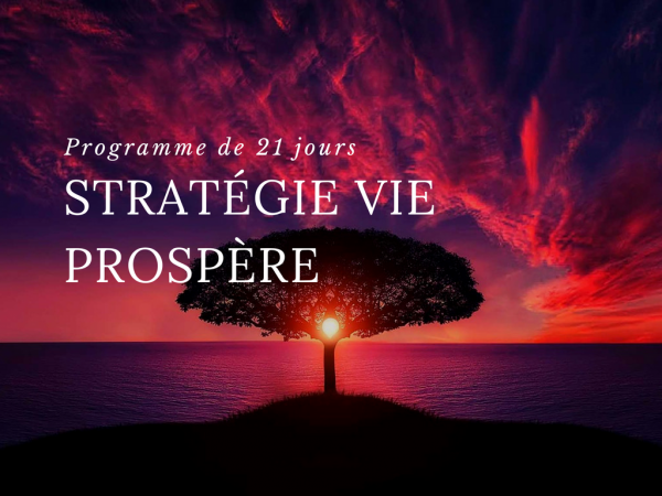Strategie vie prospere