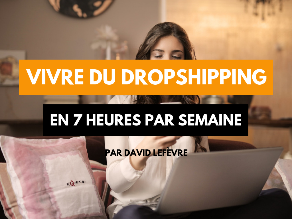 vivre du dropshipping sans shopify